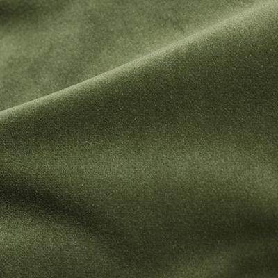 Cozy Velvet Eden Green Fabric