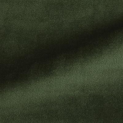 Paris Velvet Green Fabric