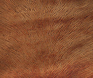 HIDE VELVET RUST Fabric