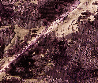 PALETTE AUBERGINE Fabric by KOKET