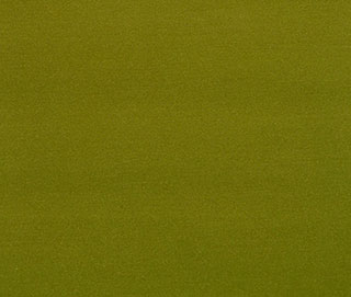 SATINA LUX SMILE GREEN Fabric