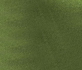 SATINA GREEN Fabric