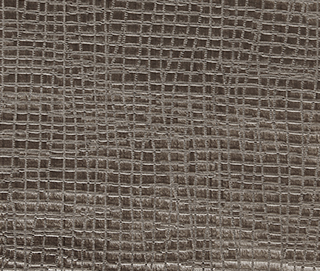 WEB TAUPE Fabric