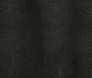 STINGRAY BLACK Leather by KOKET