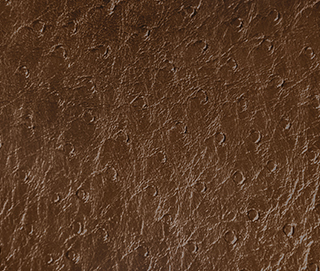 XARA 94 Synthetic Leather by KOKET