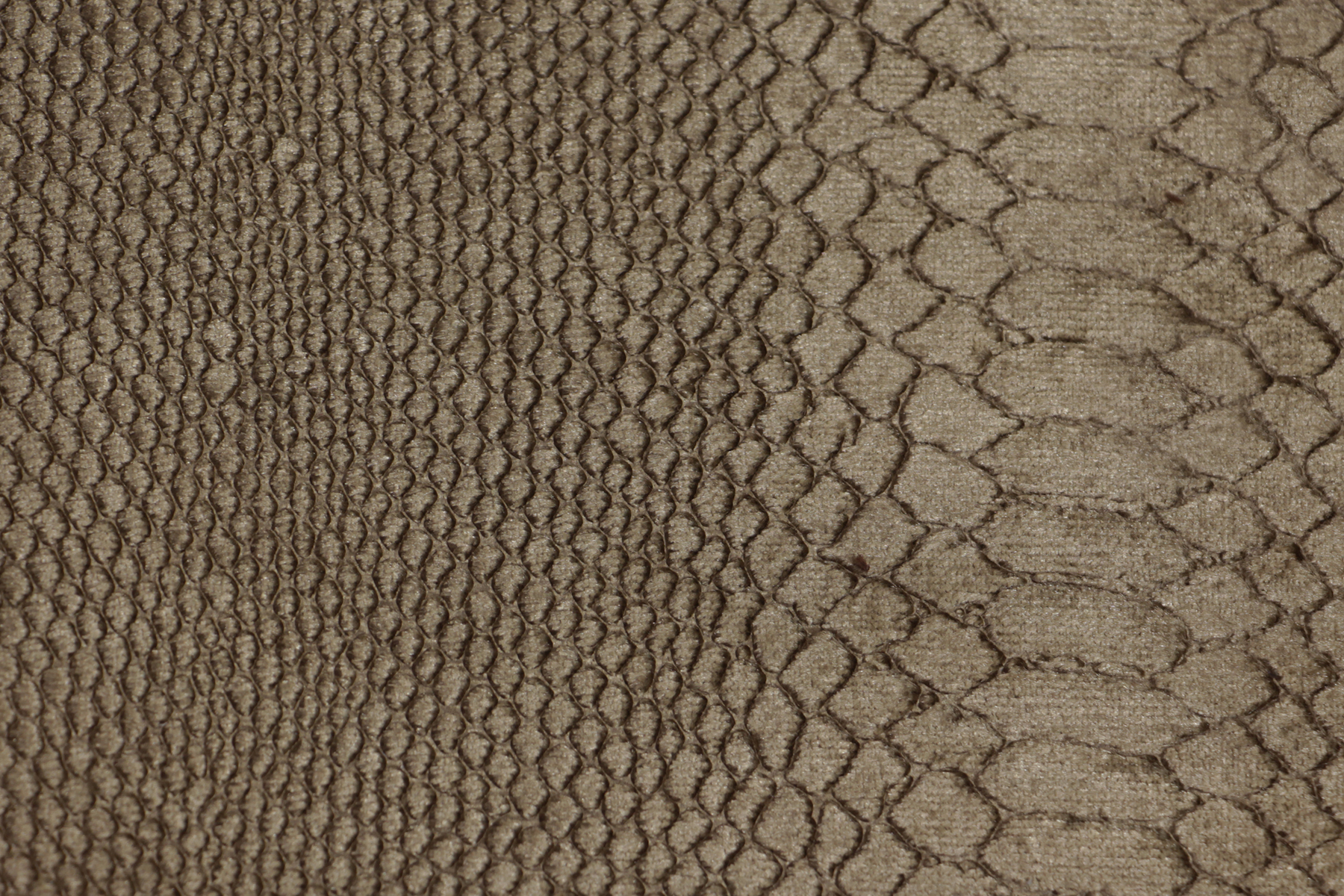 Index of /images/collection/fabrics/python-reptilia-taupe