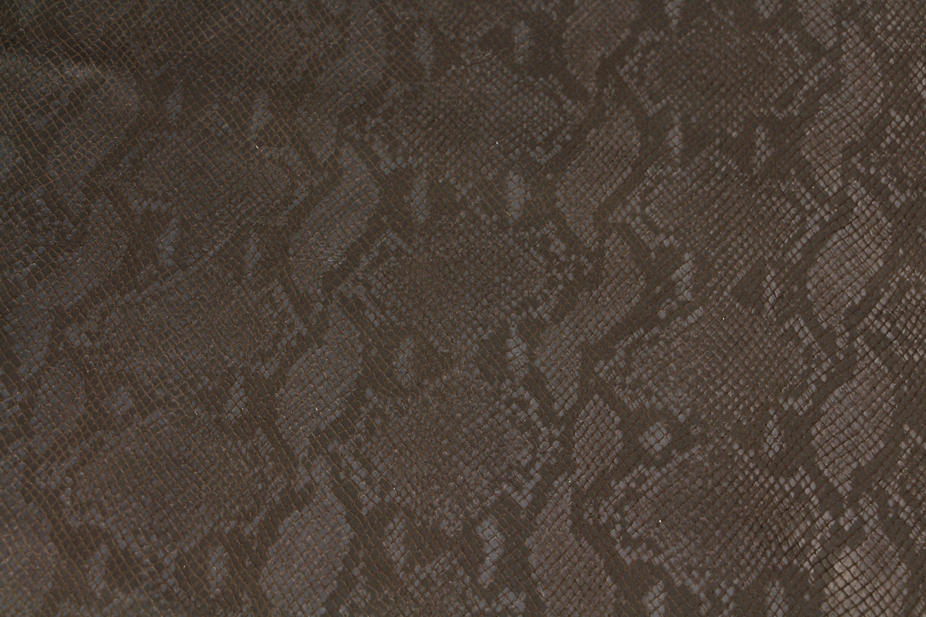 Index of /images/collection/leathers/python-pewter