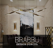 Brabbu Design Forces Partner